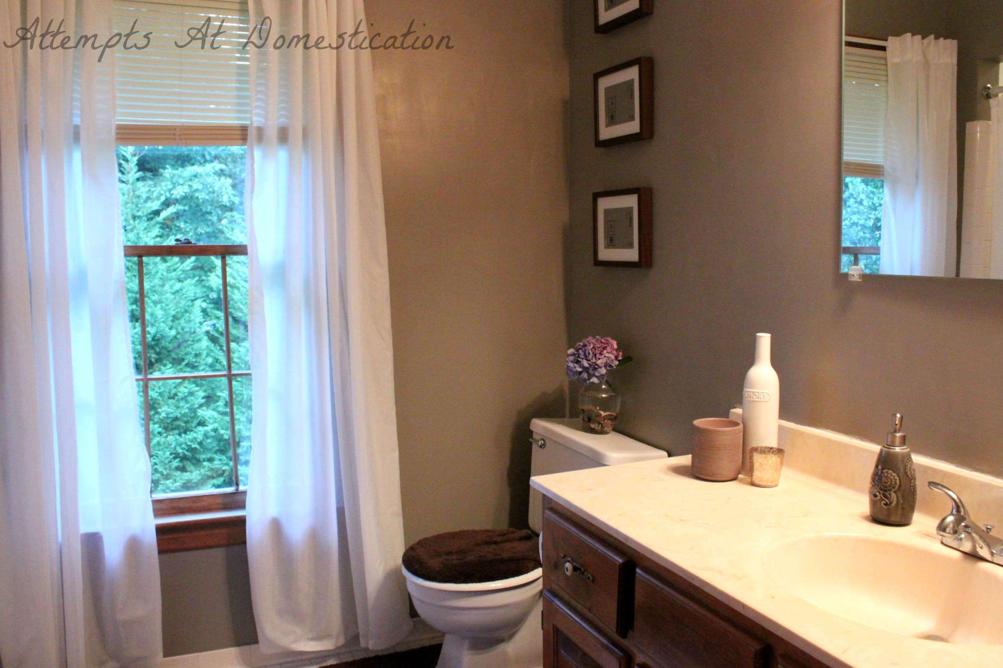 bathroom progress. bathroom progress   Attempts at Domestication