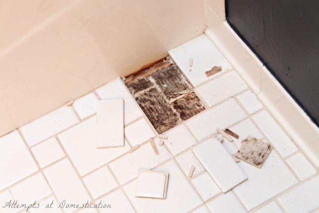 broken tiles in guest bathroom