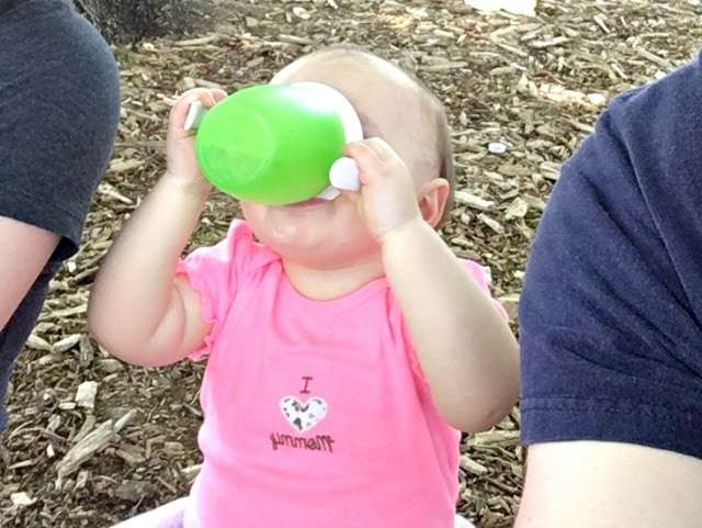 mara's sippy cup
