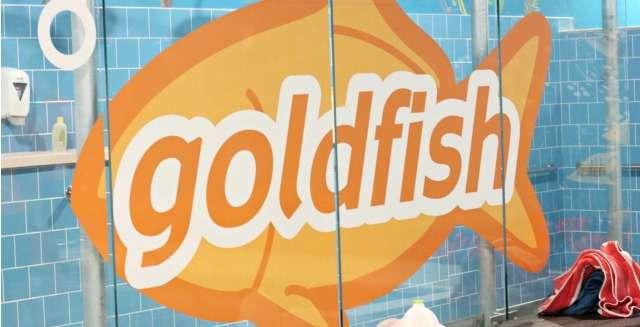 A Mom's Review of Goldfish Swim School Richmond